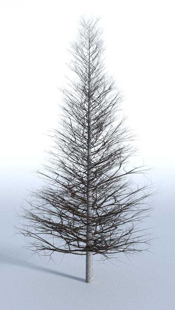 tree18