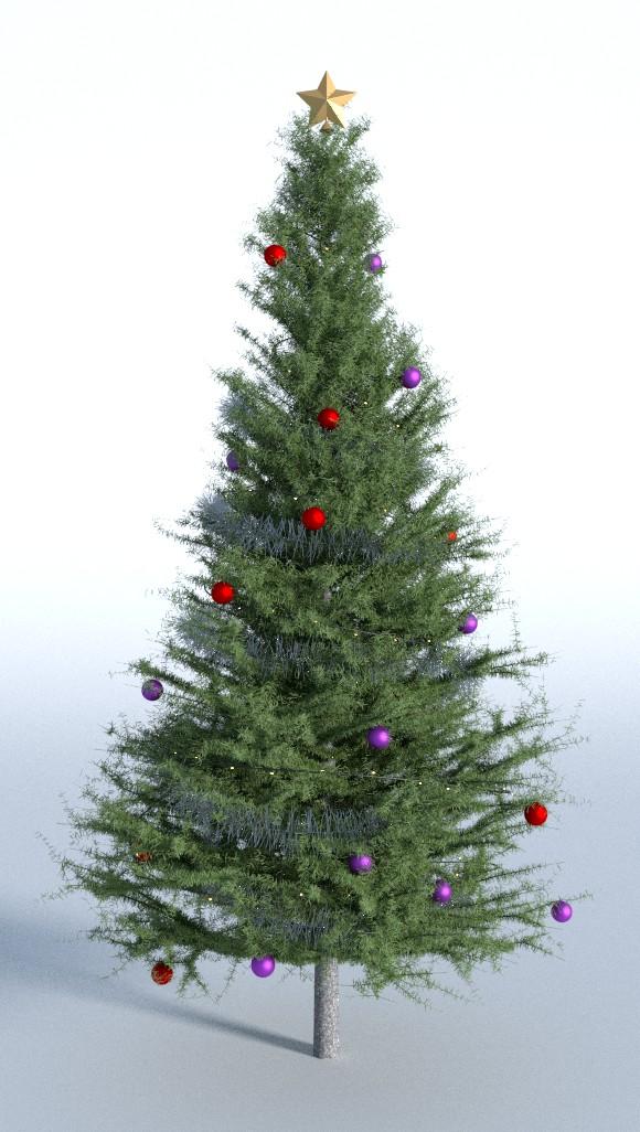 tree56