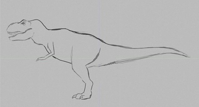 rex-sketch